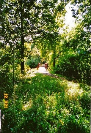 Stadtsee 13