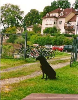 Stadtsee 6