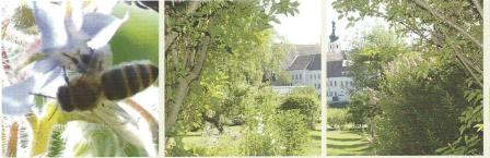 Offene Gärten in Geras